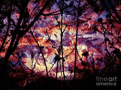 Photograph - Alien Skies by Robert Ball