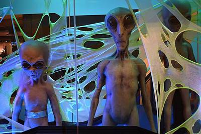 Photograph - Aliens 1 by Nina Kindred