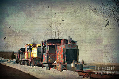 Photograph - All Aboard by Judy Wolinsky