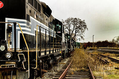 Photograph - All Aboard by William Norton