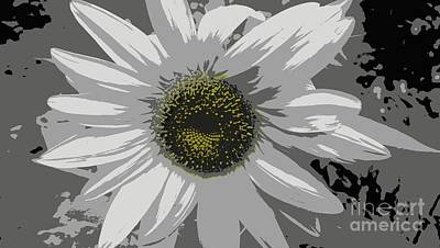 Photograph - Unique Sunflower by Eunice Miller