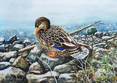 Painting - Resting Duck by Gertrudes Asplund
