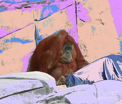 Photograph - All Alone Orangatang by Shirley Moravec