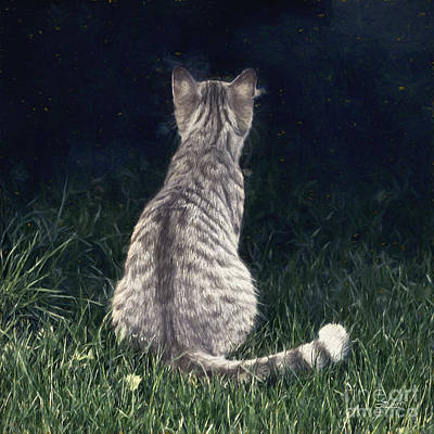 Photograph - All Cats Are Gray By Night by Jutta Maria Pusl