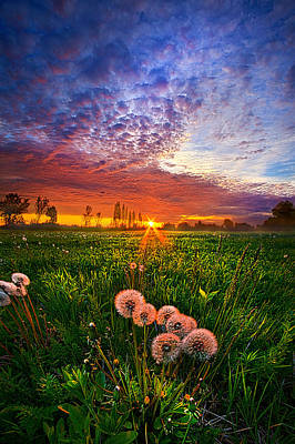 Photograph - All Changeful As The Light  by Phil Koch