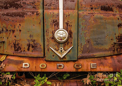 Photograph - All Dodge by Terry Rowe