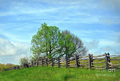 Photograph - All Fenced In Along The Blue Ridge Parkway by Kerri Farley