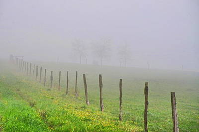 Landscape Photograph - All Fogged Up by Emily Stauring