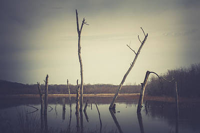 Wetlands Photograph - All Is Calm At Green Bottom by Shane Holsclaw