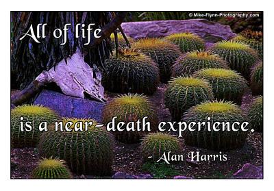 All Life Art Print
