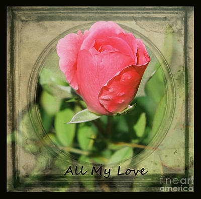 Photograph - All My Love by Nina Silver