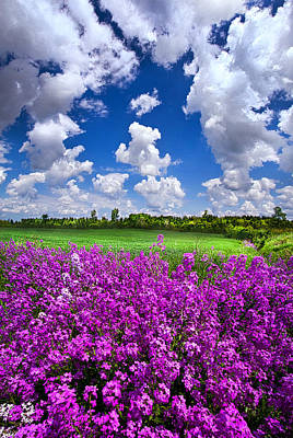 Photograph - All That Love Requires by Phil Koch
