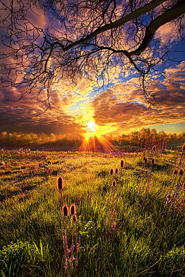 Photograph - All The World Was Right by Phil Koch