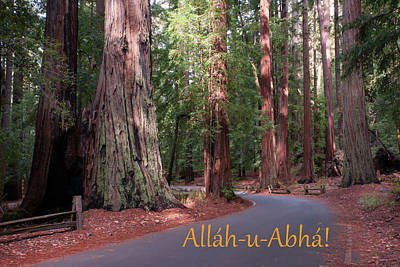 Photograph - Allah-u-abha by Baha'i Writings As Art