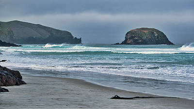 Photograph - Allans Beach - Otago Pensinsular - New Zealand by Steven Ralser