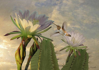 Digital Art - Allens Hummingbird And Cactus Flowers by Spadecaller