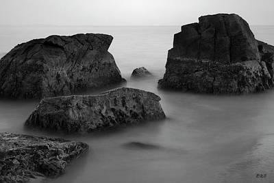 Photograph - Allens Pond Xxi Bw by David Gordon