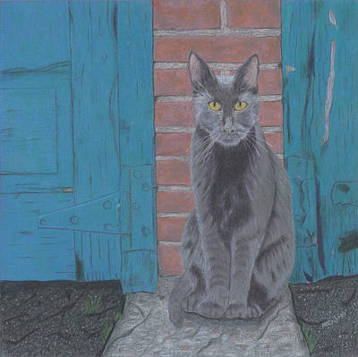 Drawing - Alley Cat by Arlene Crafton