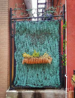 Photograph - Alley Gate In Brooklyn by Mary Capriole
