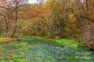 Photograph - Alley Spring Autumn Water by Jennifer White