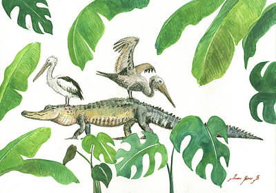 Alligator And Pelicans Print by Juan Bosco