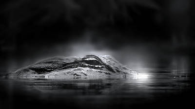 Photograph - Alligator  by Mark Andrew Thomas