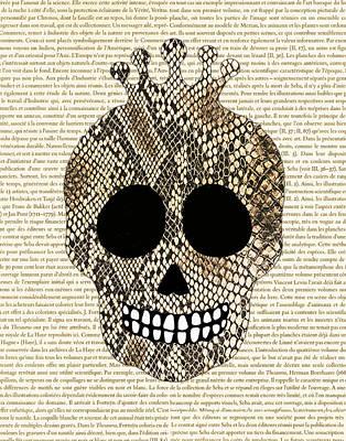 Alligator Mixed Media - Alligator Skull by Marilu Windvand