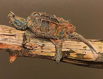Painting - Alligator Snapping Turtle  by Rob Peters