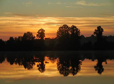 Photograph - Alligator Sunrise by rd Erickson