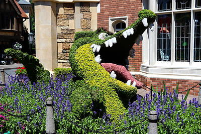 Photograph - Alligator Topiary by Denise Mazzocco