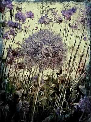 Photograph - Allium Giganteum by Leslie Montgomery