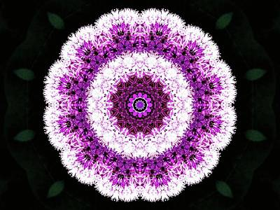 Photograph - Allium Manipulation by Karen Stahlros