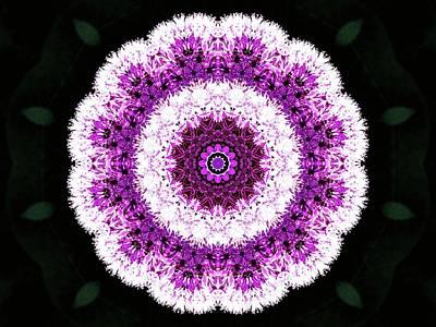 Photograph - Allium Manipulation by Karen Stahlros