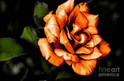 Photograph - Allure by Diana Mary Sharpton