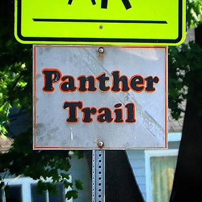 Photograph - Alma High School Panther Trail Sign by Chris Brown