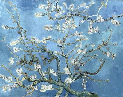Van Gogh Blossoming Almond Tree Photograph - Almond Blossom - Vincent Van Gogh by Daniel Hagerman