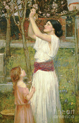 Flower Picker Painting - Almond Blossoms by John William Waterhouse