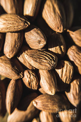 Photograph - Almond Nuts by Jorgo Photography - Wall Art Gallery