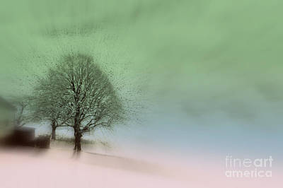 Photograph - Almost A Dream - Winter In Switzerland by Susanne Van Hulst
