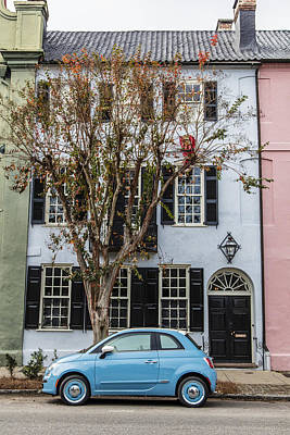 Photograph - Almost A Match In Charleston Sc by John McGraw