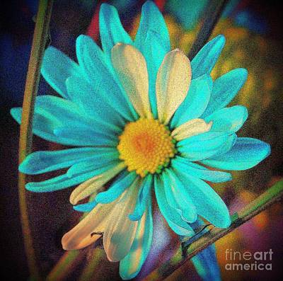 Photograph - Almost Blue by Julie Lueders
