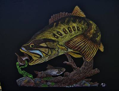Large Mouth Bass Drawing - Almost Caught by Emily Kolar