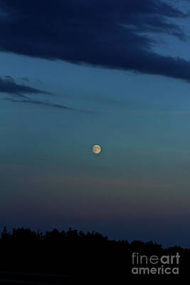 Photograph - Almost Full Moon by Ann E Robson
