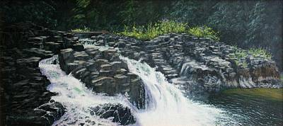 Almost Home - Lucia Falls Art Print by Ron Smothers