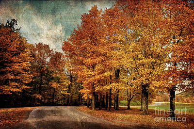 Photograph - Almost Home by Lois Bryan