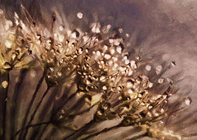 Mixed Media - Almost Sepia Delicate Dandelions by Georgiana Romanovna