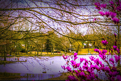 Photograph - Almost Spring - Landscape by Barry Jones