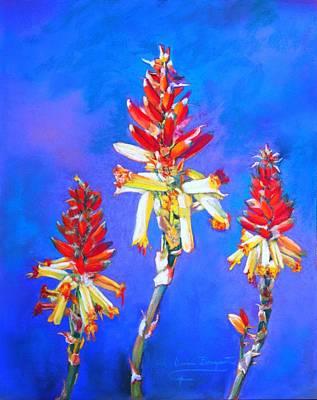 Aloe Flower Spike Art Print by M Diane Bonaparte
