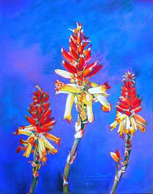 Aloe Flower Spike Art Print