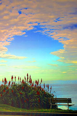 Photograph - Aloe In The Evening by Joyce Dickens